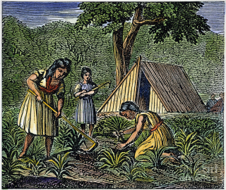 Native Americans Farming